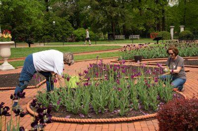 St. Louis Master Gardeners at work